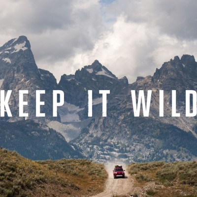 KeepItWild_Poster